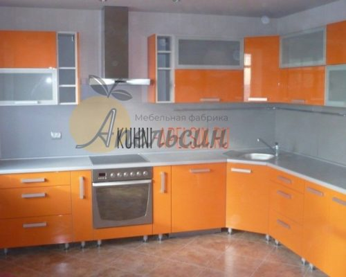 Большая кухня 10